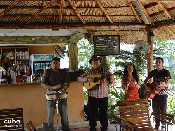 musicians playing at Divino restaurant © Cuba Absolutely, 2014