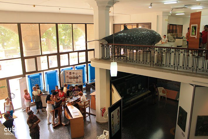 people at Natural history museum in old havana© Cuba Absolutely, 2014
