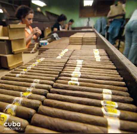 Tobacco factory © Cuba Absolutely, 2014