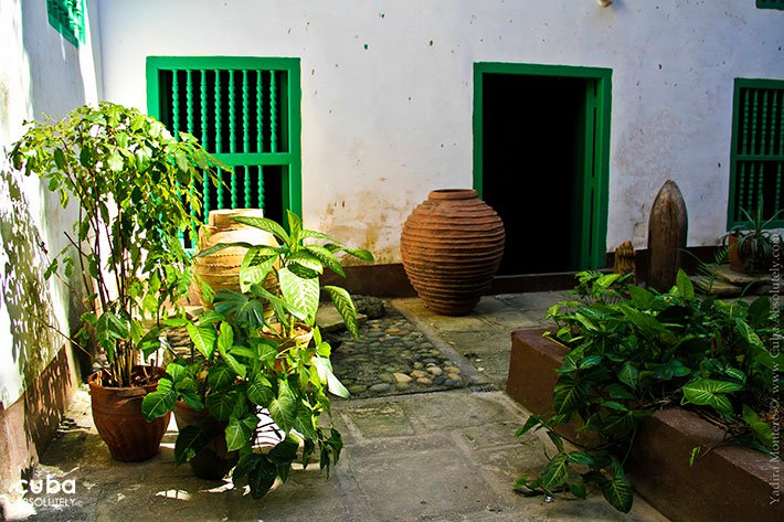 yard with plants at Juana Carvajal house © Cuba Absolutely, 2014