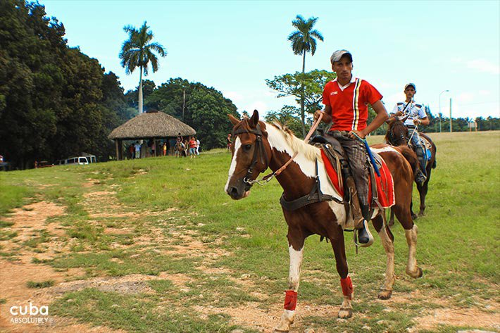 man riding a horse at Lenin park © Cuba Absolutely, 2014