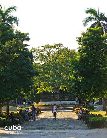 people at a park with big trees © Cuba Absolutely, 2014