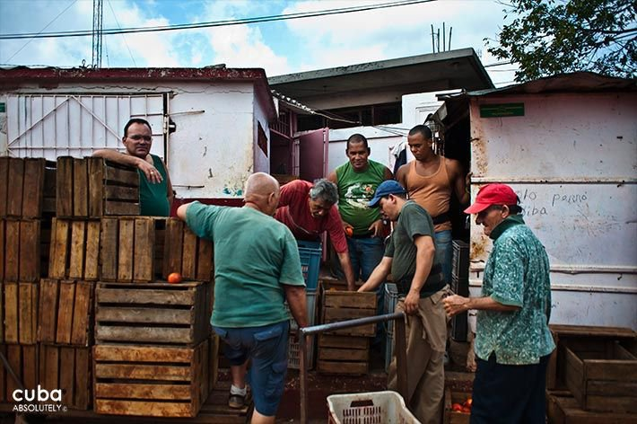 Market on 19 y B in Vedado, group of man next to wood boxes © Cuba Absolutely, 2014 - 2020