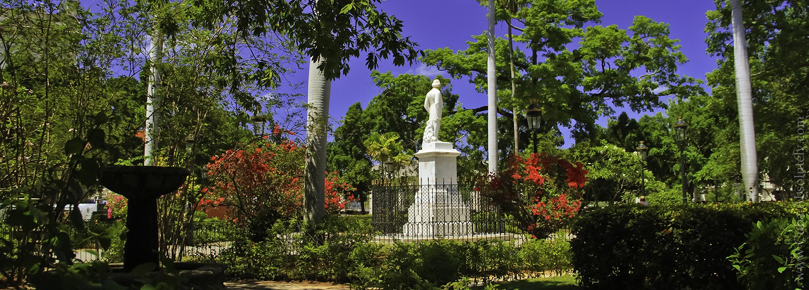Park with a statue in the middle