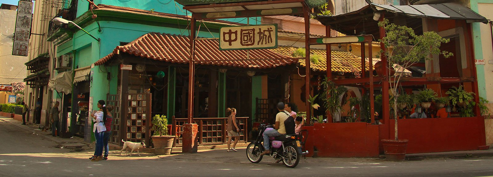 Entrance to the China town, chinese arquitecture and a green building