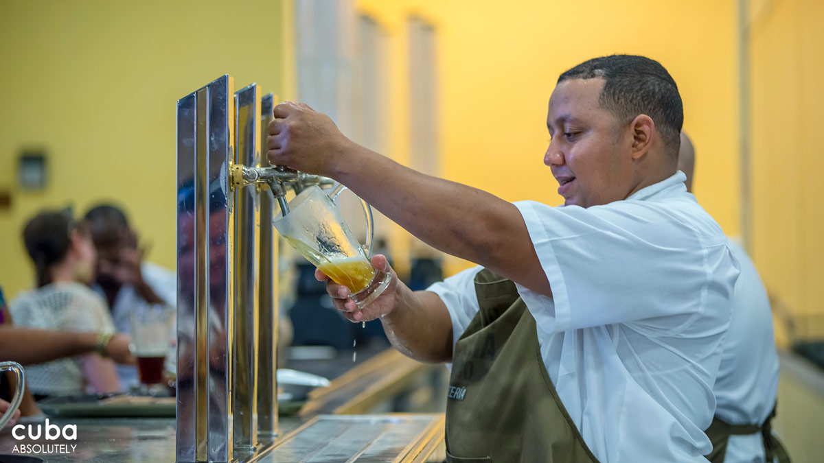 They are currently using five types of malted barley—Pilsen, Munich, dark caramel, light caramel and toasted—combining them in different proportions in order to obtain different colors and tastes for each of the beers they make: light, dark and black. Havana, Cuba