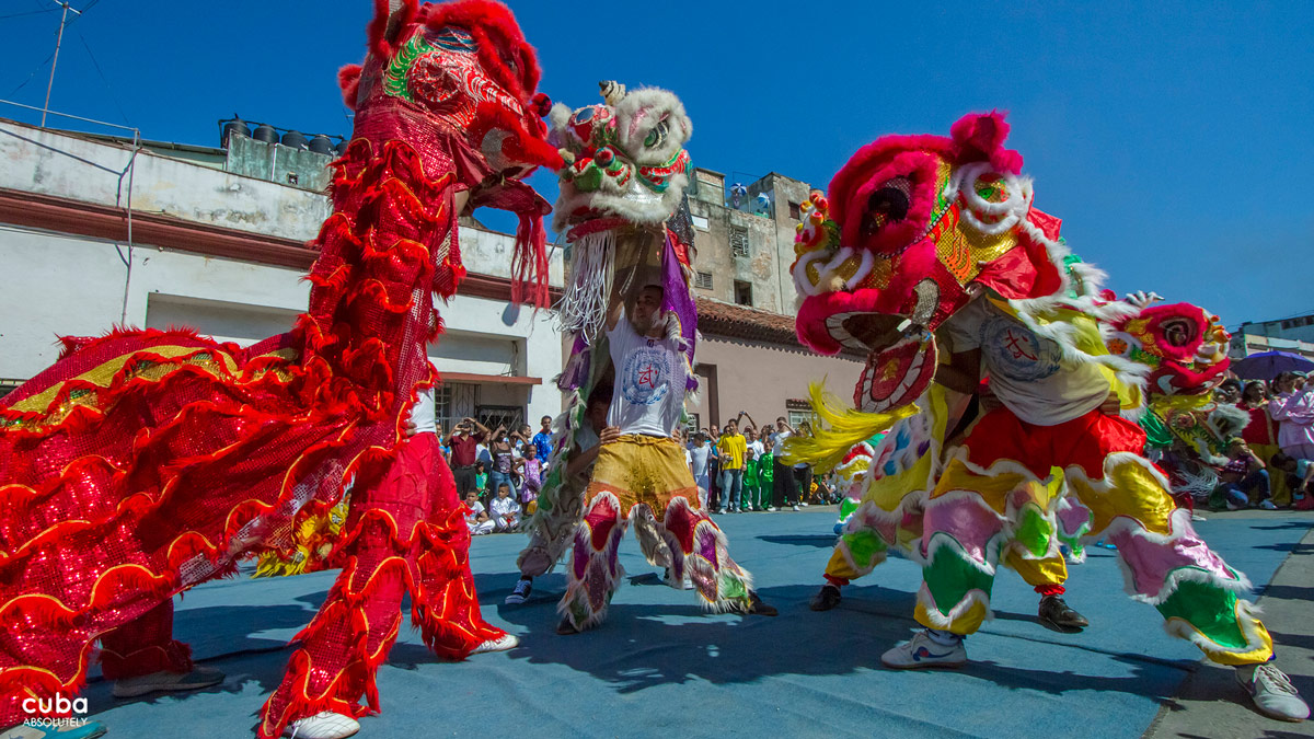 in cuba the most important event in the chinese year is celebrated with traditional dragon - Chinese New Year 1999